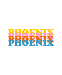 PHOENIX Colour T Shirt