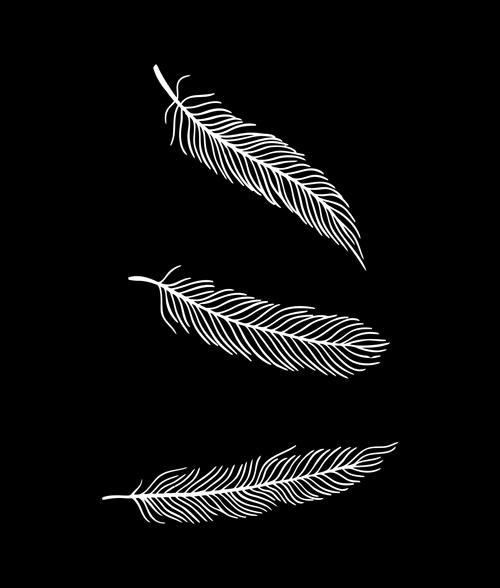 Drop Dead Feathers T Shirt