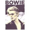 David Bowie T Shirt Smoking