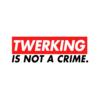 Twerking Is Not A Crime T Shirt