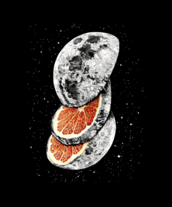 Lunar Fruit T Shirt