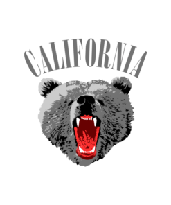 California Face Bear T Shirt