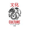 Culture Dragon Kanji T Shirt