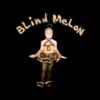 Blind Melon Crammed in a Van Tour 92-93 Band T Shirt