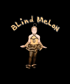 Blind Melon Crammed in a Van Tour 92-93 Band T Shirt