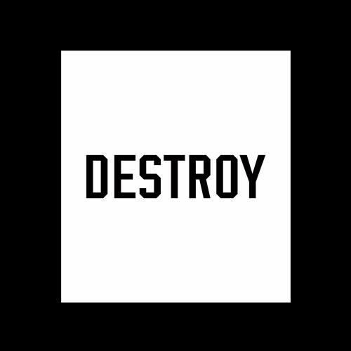 Destroy T Shirt