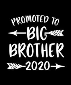 Promoted to Big Brother est 2020 Vintage Arrow T-Shirt