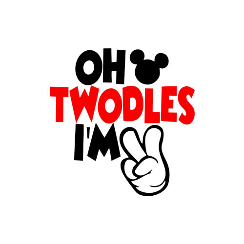 Kids 2nd Birthday Tee, Two Year Old Birthday, I'm Two, Oh Twodles T-Shirt
