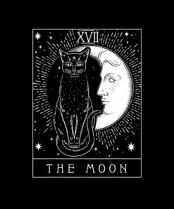 Tarot Card Crescent Moon And Cat Graphic T-Shirt