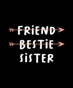 Friend Bestie Soul Sister Best Gift for 2 3 Girls BFF T-Shirt