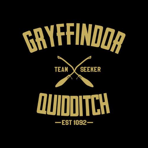 Gryffindor Shirt Harry Potter Quidditch T Shirt