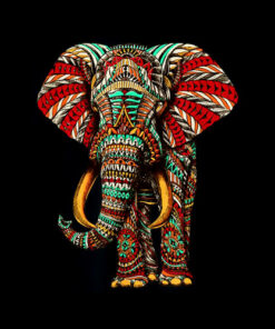 Henna Stylish Artistic Save The Elephants Wildlife T-Shirt