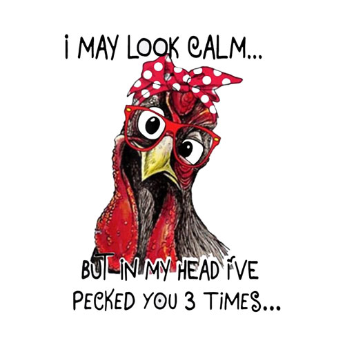 I May Look Calm But In My Head I've Pecked You 3 Times T-Shirt
