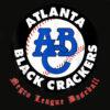 Negro League Baseball Shirt