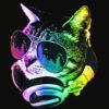 Rainbow Music Cat T Shirt