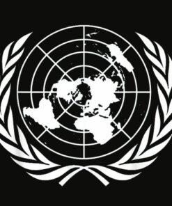 United Nations Flag T Shirt