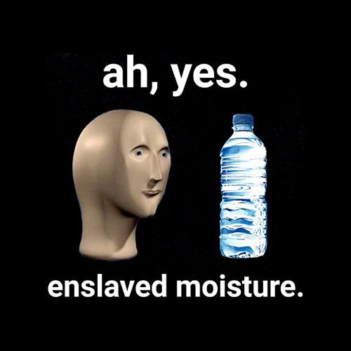 Ah Yes Enslaved Moisture Dank Meme