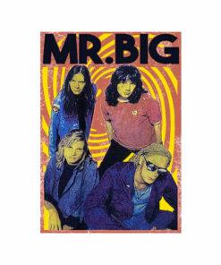 Mr Big Vintage Band T Shirt