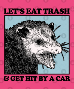 Let's Eat Trash & Get Hit By A Car T-Shirt Design
