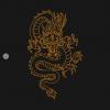 Gold dragon t-shirts black design